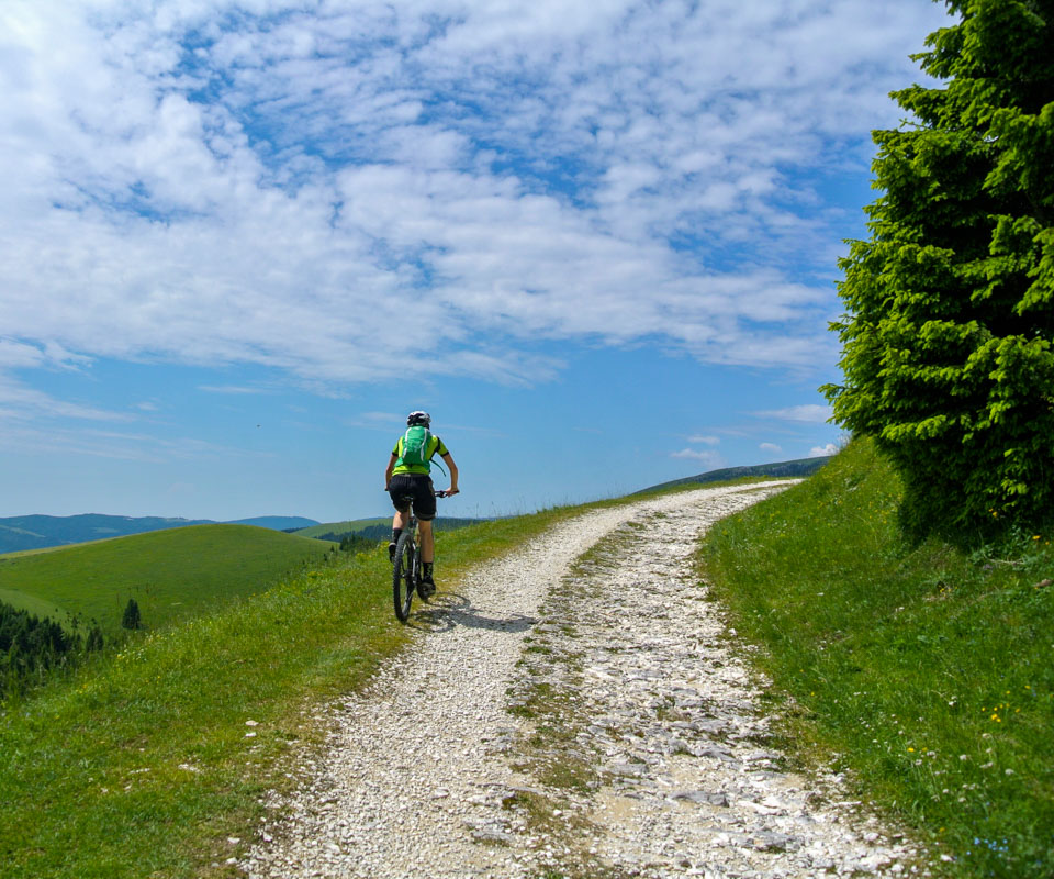 mountain bike campomulo