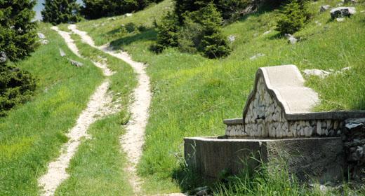 itinerario campomulo malga fiaretta 3