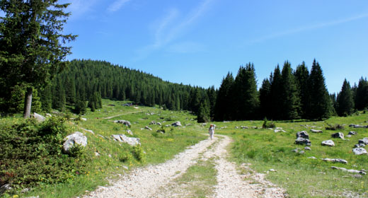 itinerario sentiero silenzio 1
