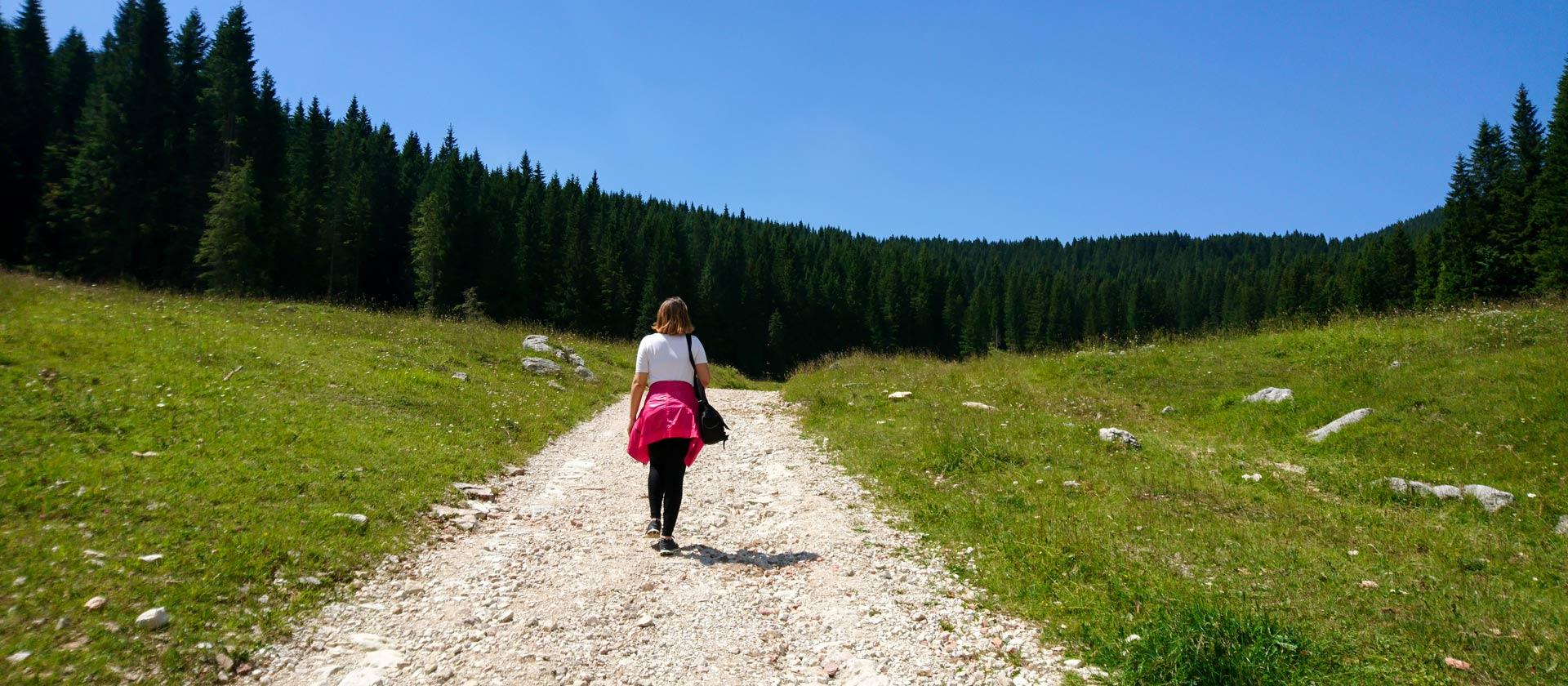 sentieri per passeggiate