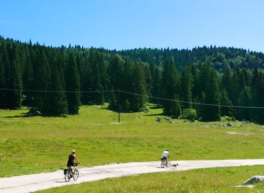 Percorsi per mountain bike